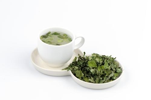 Moringa-tea (1)