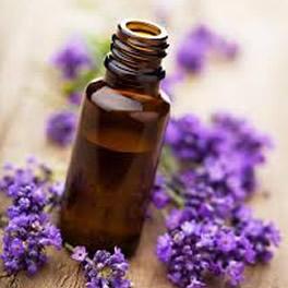 lavender02